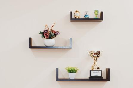 plant-prize-shelves-74942-1.jpeg