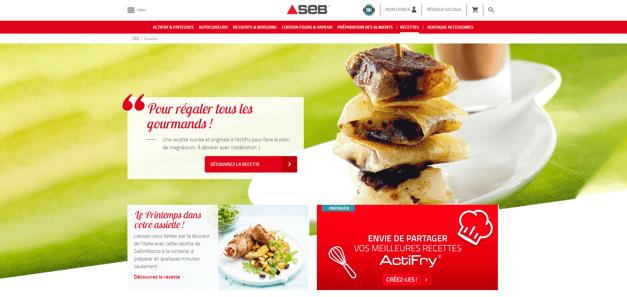 Capture d'écran du site Seb